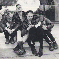 The Membranes Music Discography