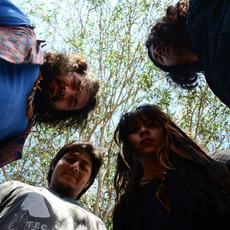 Dazed Sun Lemonade Music Discography