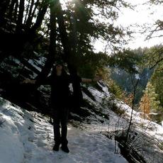 Evergreen Refuge Discography