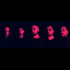 Reversal Symmetry Discography