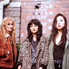 L.A. Witch Discography