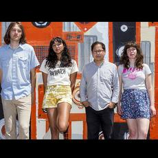 Shana Cleveland & The Sandcastles Music Discography